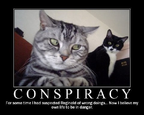 http://commonsenseconspiracy.com/wp-content/uploads/2011/09/catconspiracy.jpg